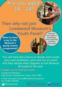 youth panel poster